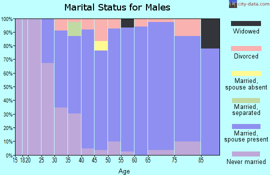 Zip code 55960 marital status for males