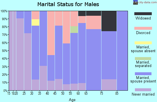 Zip code 55983 marital status for males
