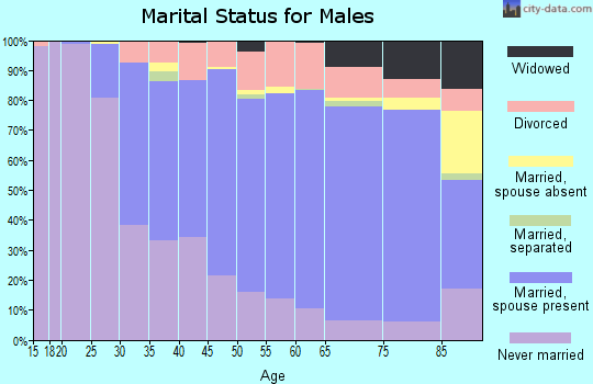 Zip code 55987 marital status for males