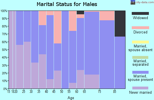 Zip code 56014 marital status for males