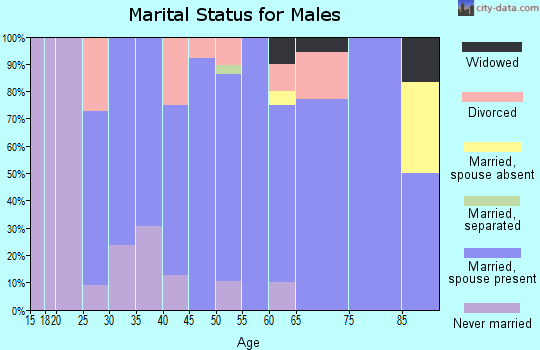 Zip code 56025 marital status for males