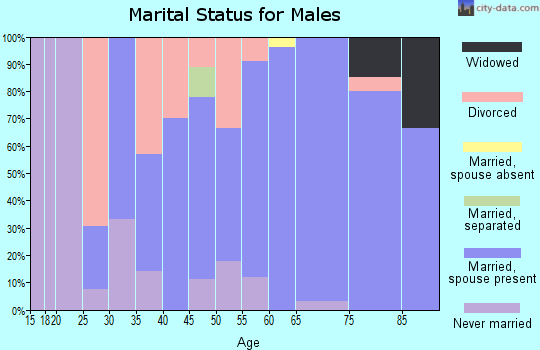 Zip code 56029 marital status for males