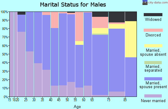 Zip code 56072 marital status for males