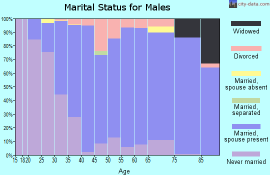 Zip code 56093 marital status for males