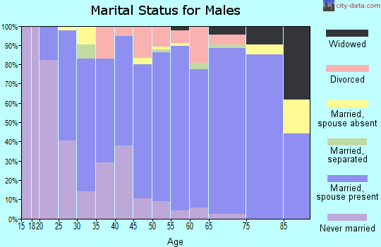 Zip code 56097 marital status for males