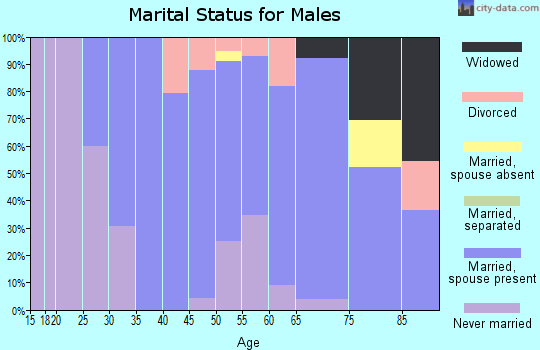Zip code 56119 marital status for males