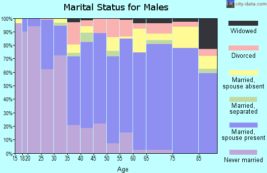 Zip code 56187 marital status for males