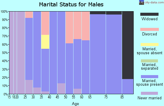 Zip code 56221 marital status for males