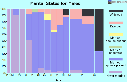 Zip code 56229 marital status for males