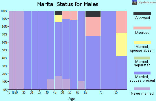 Zip code 56251 marital status for males