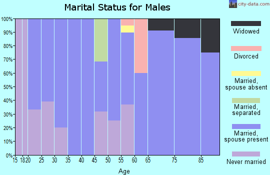 Zip code 56255 marital status for males