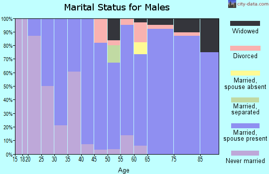 Zip code 56332 marital status for males