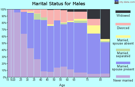 Zip code 56345 marital status for males