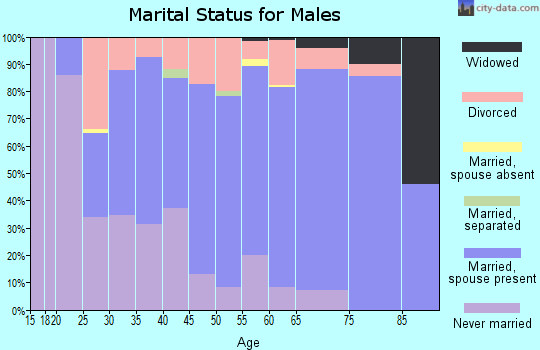 Zip code 56435 marital status for males