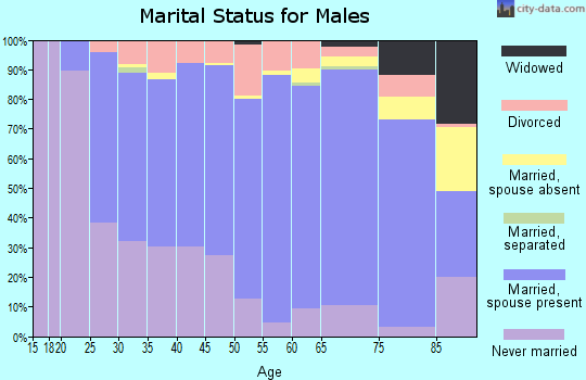 Zip code 56537 marital status for males