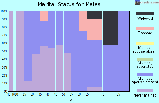 Zip code 56550 marital status for males