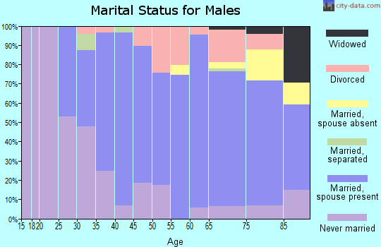 Zip code 56551 marital status for males