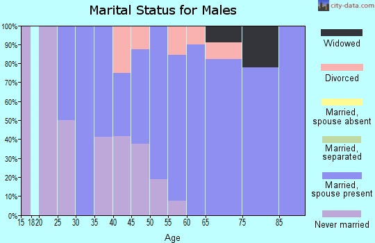 Zip code 56590 marital status for males