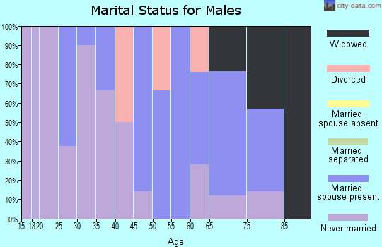Zip code 56684 marital status for males