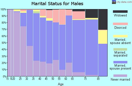 Zip code 56701 marital status for males