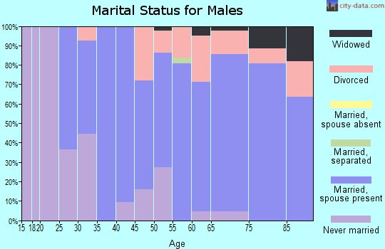 Zip code 56742 marital status for males