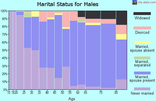 Zip code 57006 marital status for males
