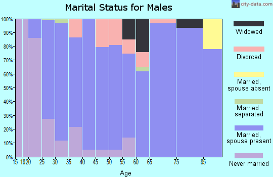 Zip code 57033 marital status for males
