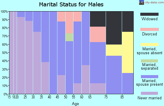Zip code 57034 marital status for males