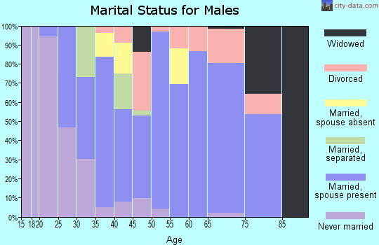 Zip code 57049 marital status for males