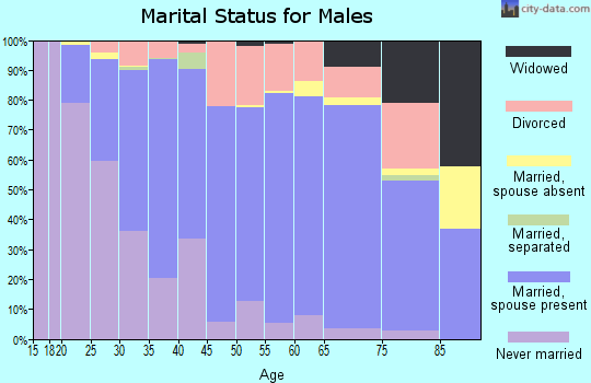 Zip code 57106 marital status for males