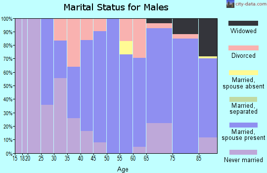 Zip code 57225 marital status for males