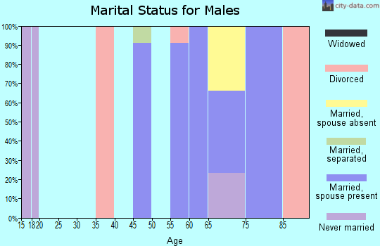 Zip code 57247 marital status for males