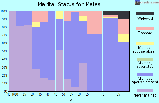 Zip code 57325 marital status for males