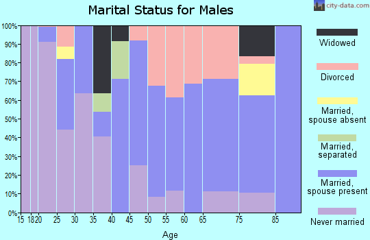 Zip code 57356 marital status for males