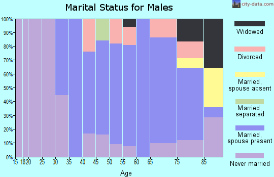 Zip code 57376 marital status for males