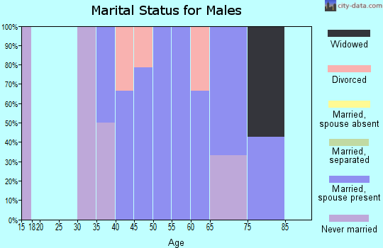 Zip code 57386 marital status for males