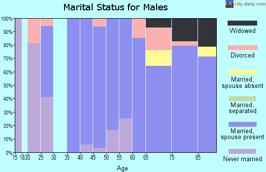 Zip code 57428 marital status for males