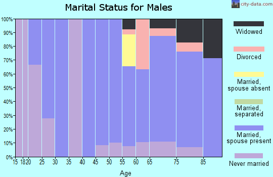 Zip code 57632 marital status for males