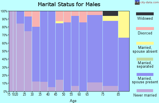 Zip code 58278 marital status for males