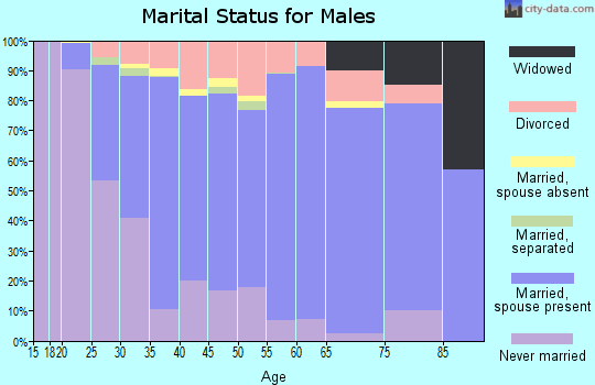 Zip code 58504 marital status for males