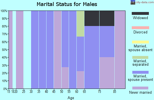 Zip code 58549 marital status for males