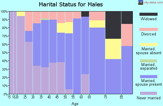 Zip code 59427 marital status for males