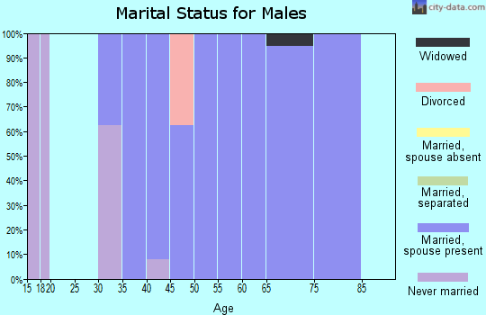 Zip code 59485 marital status for males
