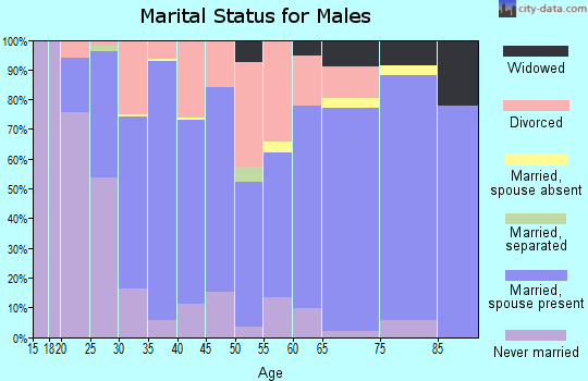Zip code 59860 marital status for males