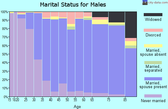Zip code 60004 marital status for males