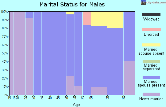Zip code 60029 marital status for males