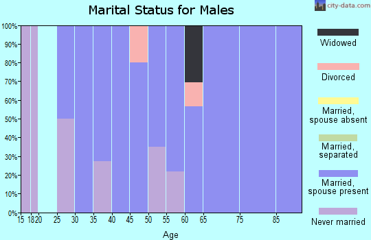 Zip code 60109 marital status for males