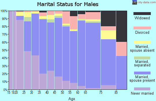Zip code 60139 marital status for males