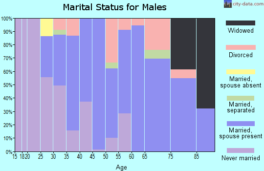Zip code 60163 marital status for males