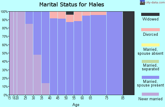 Zip code 60184 marital status for males